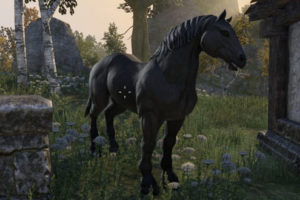 Complete Horse Guide for The Elder Scrolls Online (ESO)